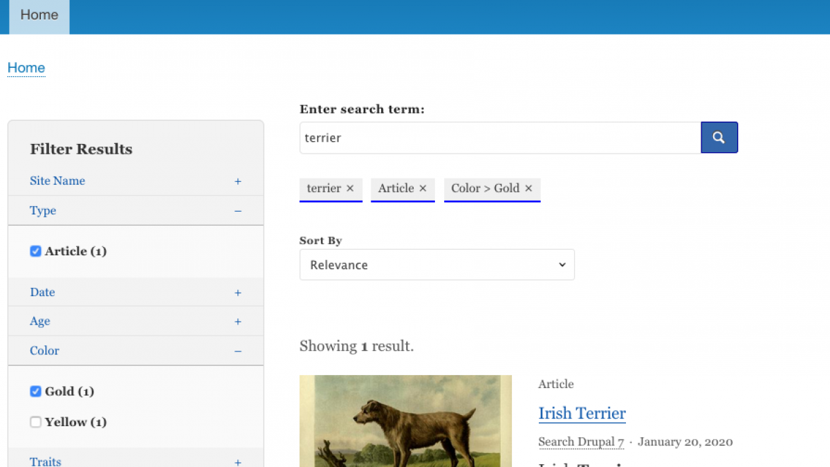 Federated Search screenshot showing results for an article about an Irish Terrier